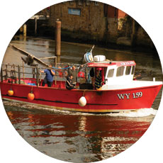 Trawler in Whitby Harbour